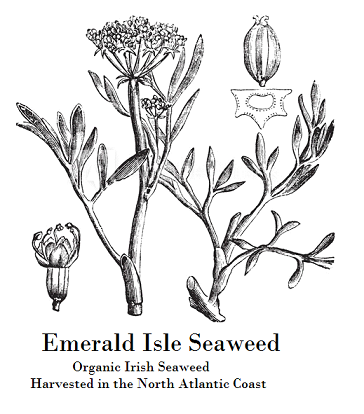 Our sister company, Emerald Isle Seaweed